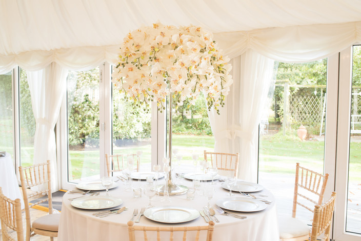 Luxe Orchid Centrepiece