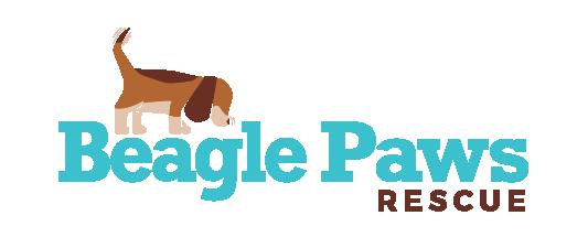 Beagle Paws Rescue | Canada