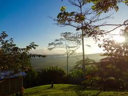 Kokoda Track Dawn Breaking
