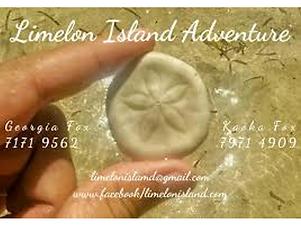 logo-limelon-island-adventure.png