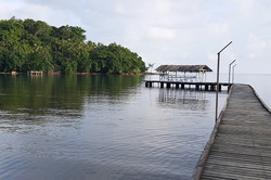 Kokola Rainforest Beach Retreat