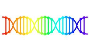 Nghiên cứu mới công bố: không có gen đồng tính