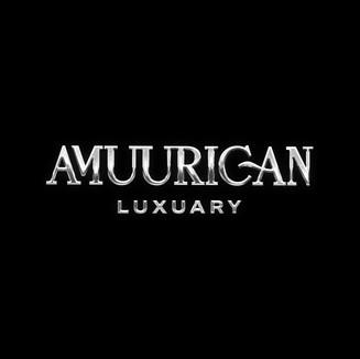 Am-lux---Silver-logo.jpg