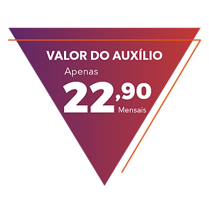 tag valor do plano-01.png