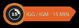 IGG.png