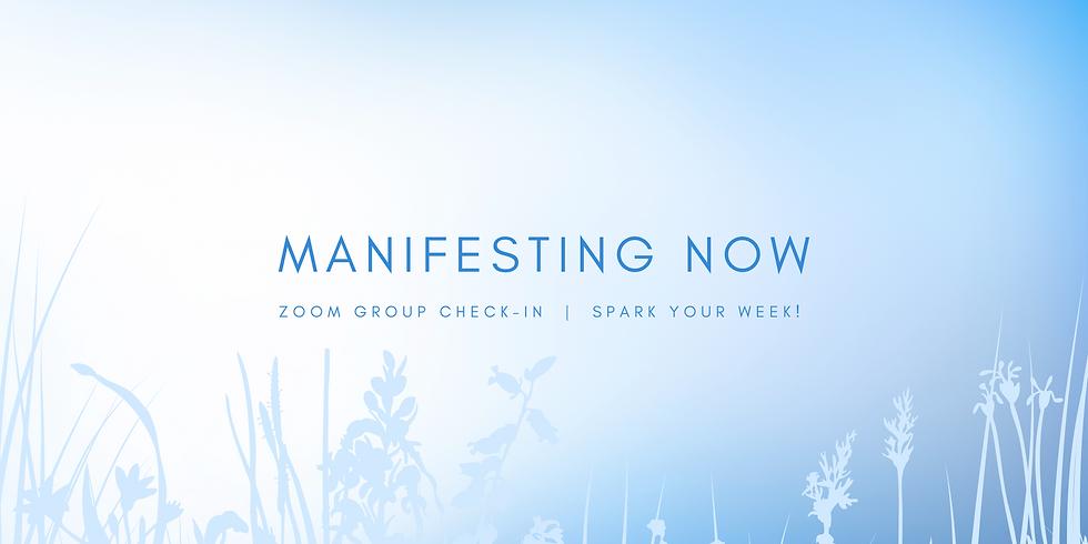 """""""Manifesting Now"""" - Spark Your Week! Members"""