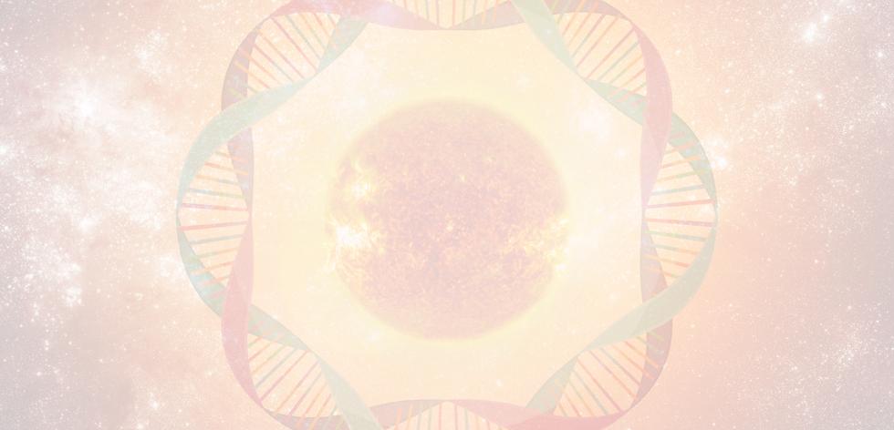 Diamond Sun Body Membership.png