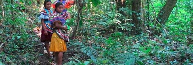 Selva Lacandona, Chiapas: Seguro de Cancelación