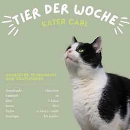 Tier der Woche: Carl