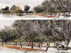 imagenes del futuro parque lo prado con arboles grandes