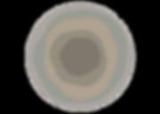 bold_huisstijlelement2.png