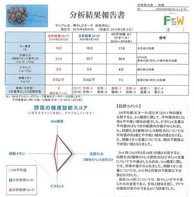 ぶどう炭無し (2).jpg