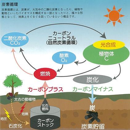 炭素循環1.jpg