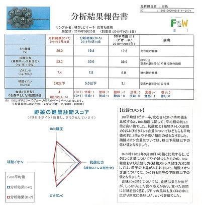 ぶどう炭あり (3).jpg