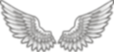 wings_PNG31.png