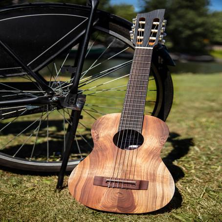 Neem je gitaar mee op reis