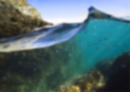 snorkeling reserve marine