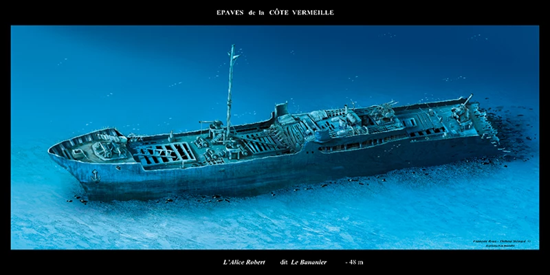 Le Bananier - Aquablue - Banyuls-sur-mer