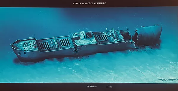 Le Saumur - Aquablue - Banyuls-sur-mer