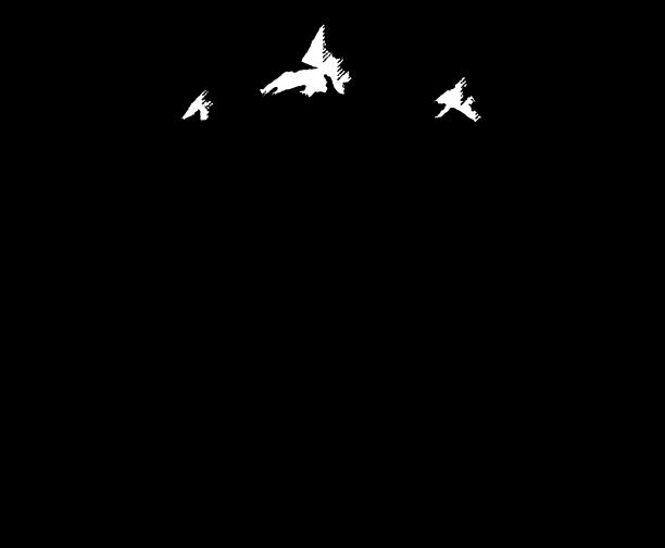 Image result for skookum logo revelstoke