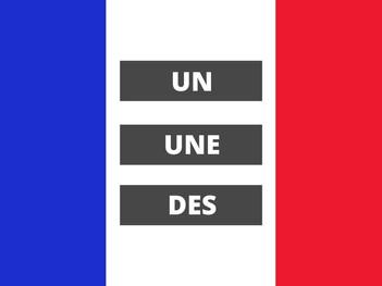 The French Indefinite Articles: Un - Une - Des