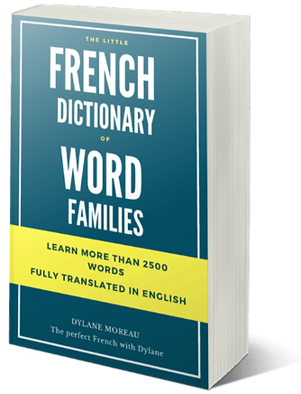 The-perfect-French-The-little-dictionary