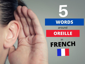 5 French words around the word OREILLE