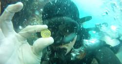 rob gold coin Aug 2017
