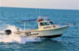SHSI Sea Hunter.png