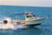 Sea Hunter.png