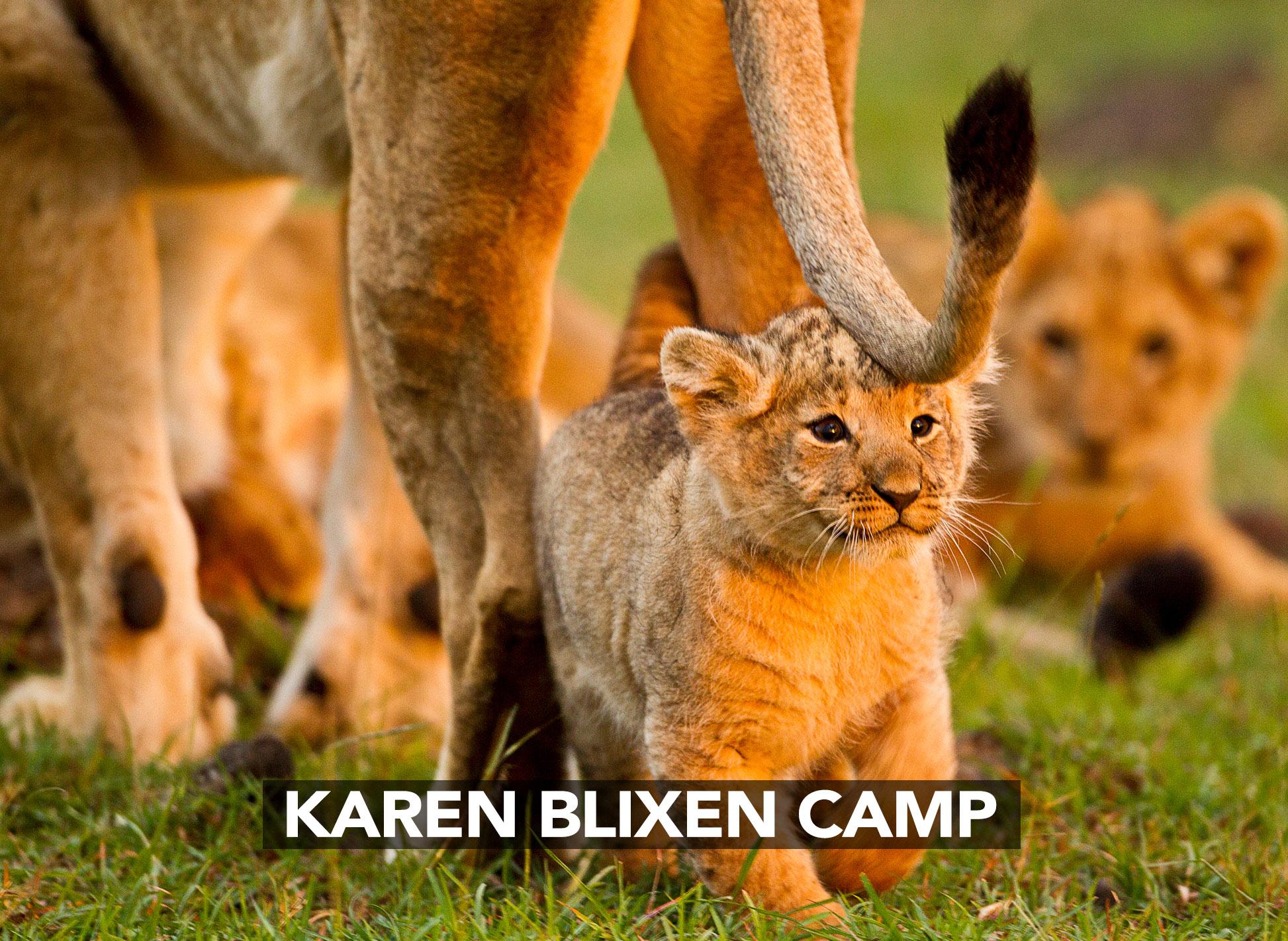 KAREN BLIXON CAMP