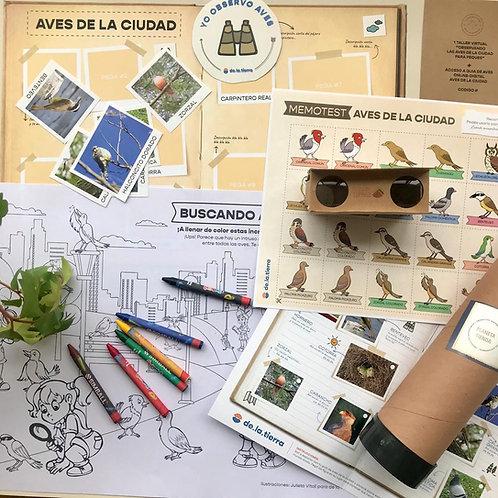 Kit 1 - Aves