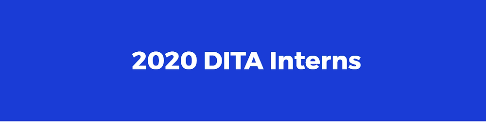 Blue background with the text '2020 DITA Interns'