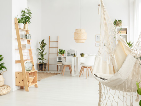 Top 5 Indoor Plants for Apartments