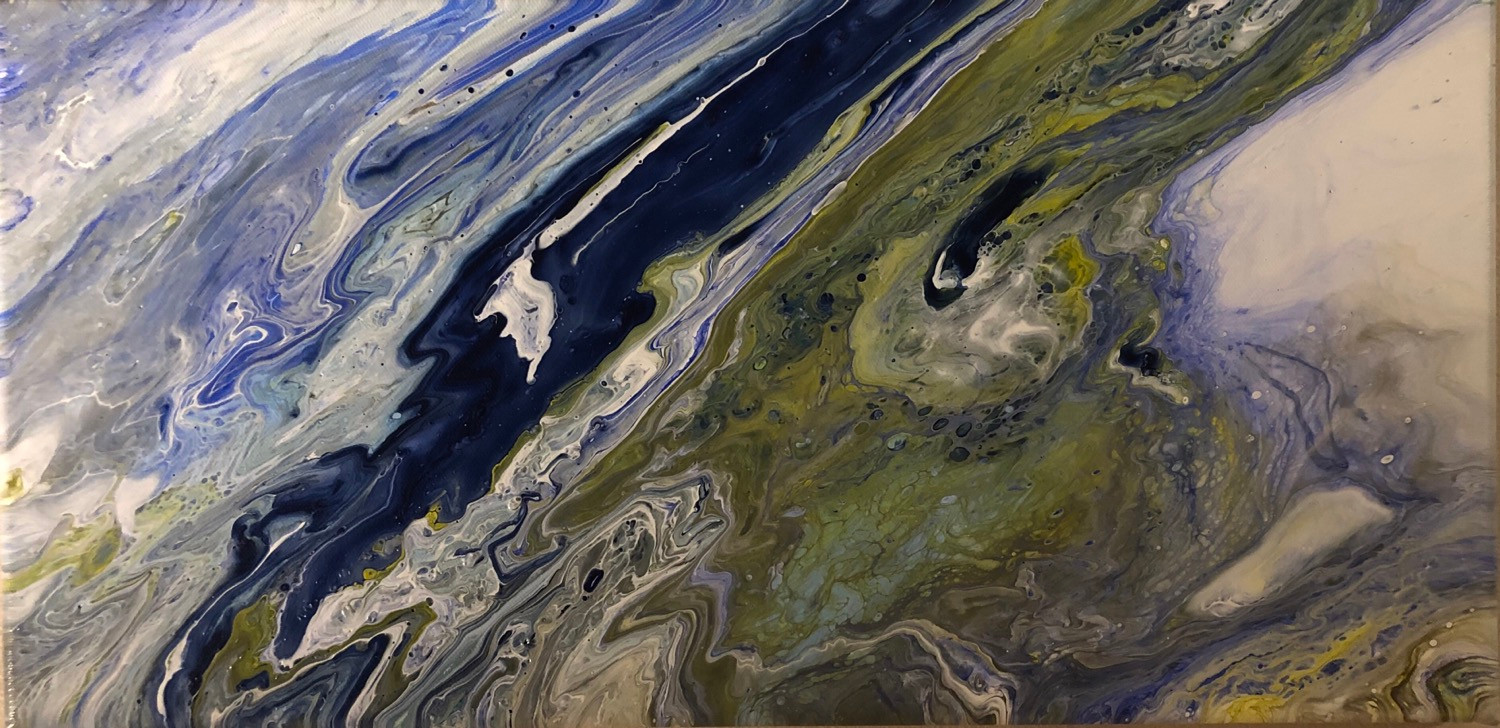Coastline (Earth From Above series)