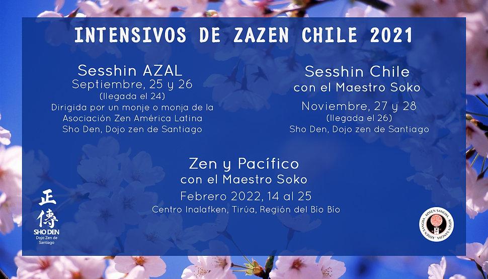Afiche intensivos 2021 blu2.jpg