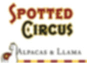 spotted circus.jpg