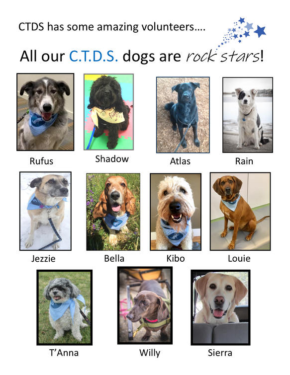 All our CTDS dogs are Rock stars PNG  1