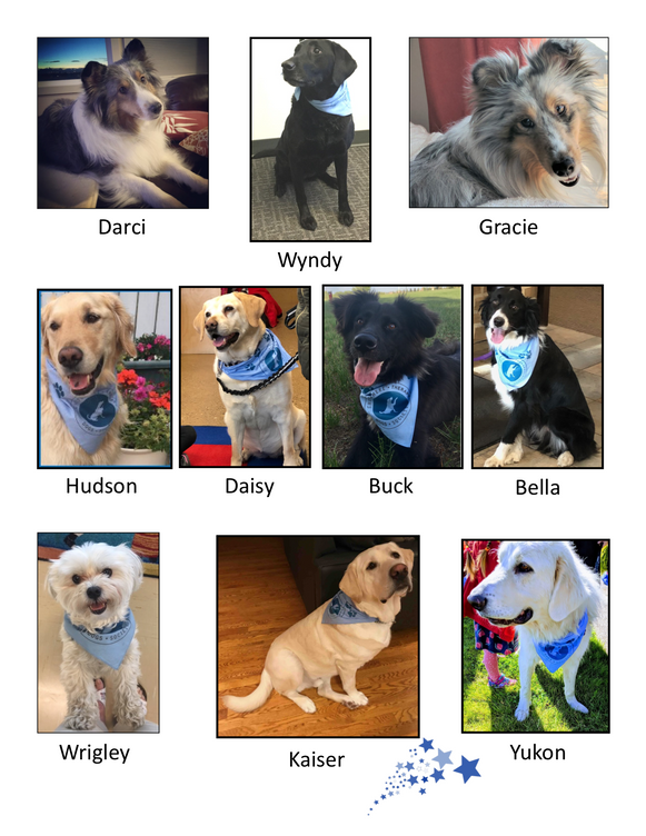All our CTDS dogs are Rock stars PNG 5 H