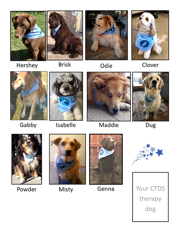 All our CTDS dogs are Rock stars PNG 6 H