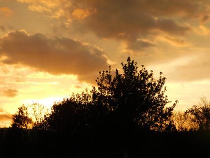 Sunset over Rambling River Pastured