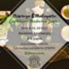 Malegueta & Moringa Class Flyer .jpg