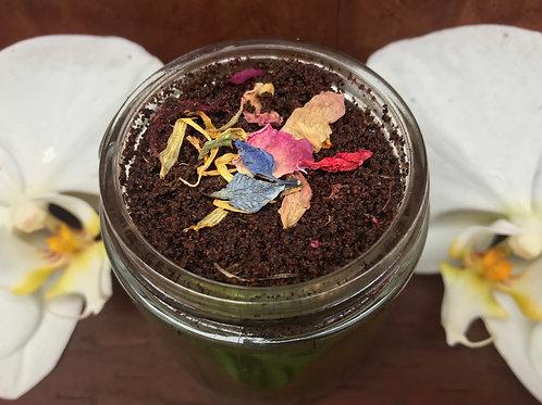 Abuela Maria Coffee Sugar Scrub
