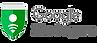 Partner-Logo-googlesafebrowsing-300x108.png