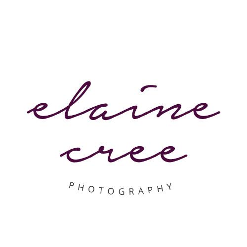 Elaine Cree Logo Design