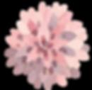 Dear Dahlia Florals