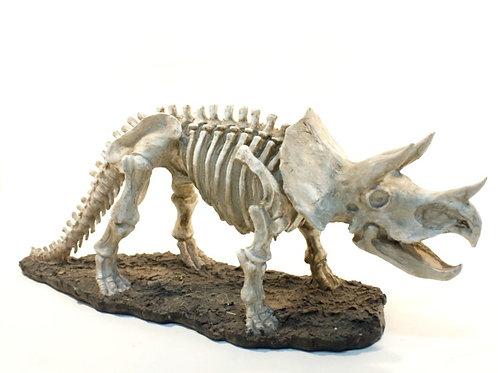 Esqueleto de Tríceratope