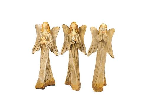 Trio de Anjinhas