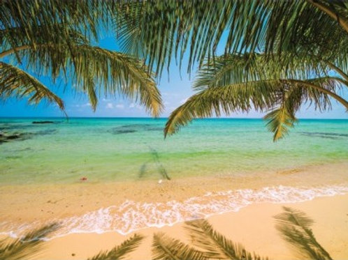 Painel Praia