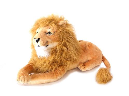 Leão P